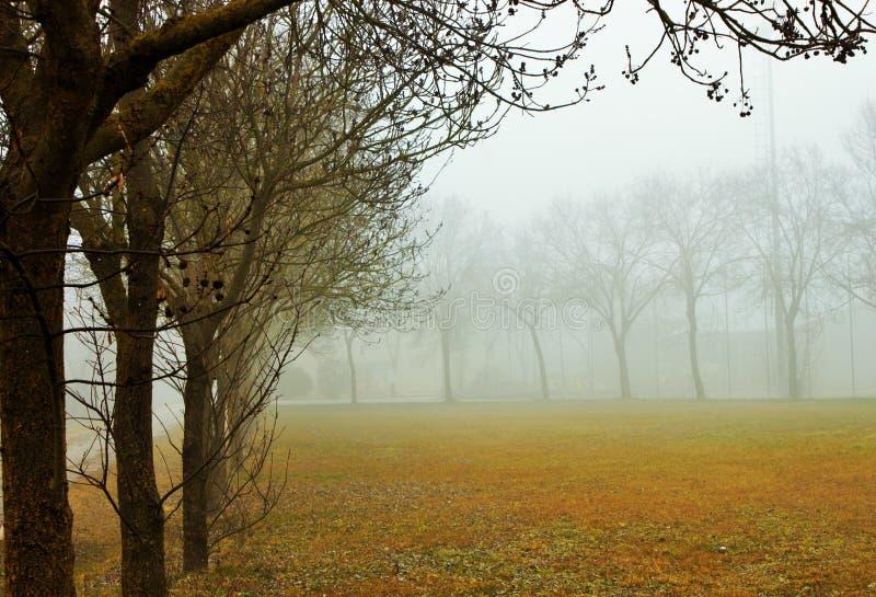 Fotografie eines Tages des Nebels Der Nebel hat seinen eigenen Charme lizenzfreie stockfotografie