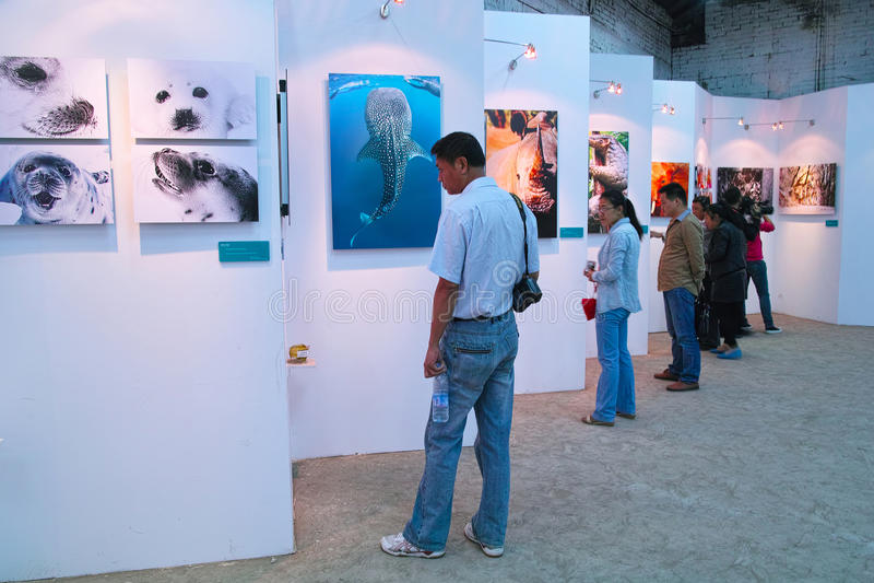 Fotografiefestival stock fotografie