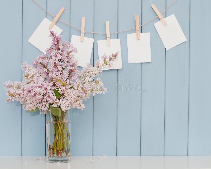 Fotografier på klädnypan och gruppen av lilan arkivfoton