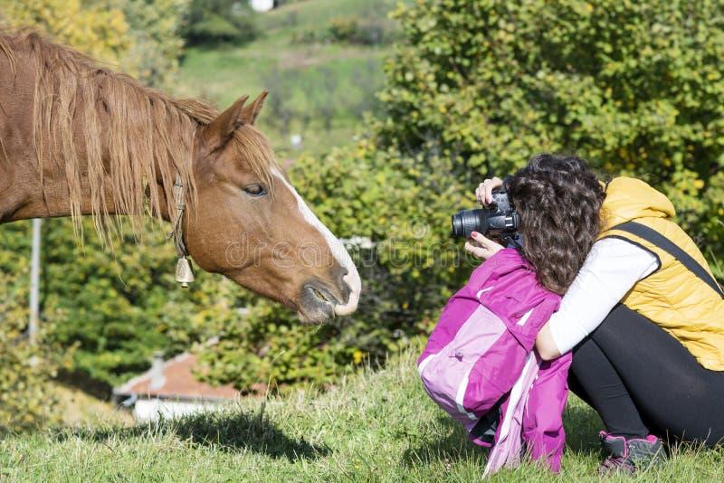 Fotografieren Sie die Frau, die ein schönes rotes wildes Pferd schießt stockbild