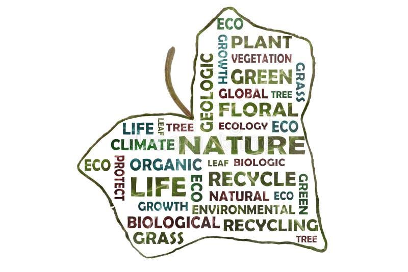 Fotografisch gecreeerde die markeringswolk met sleutelwoorden zoals aard, de geologie, ecologie van een klimopblad wordt verwijde vector illustratie