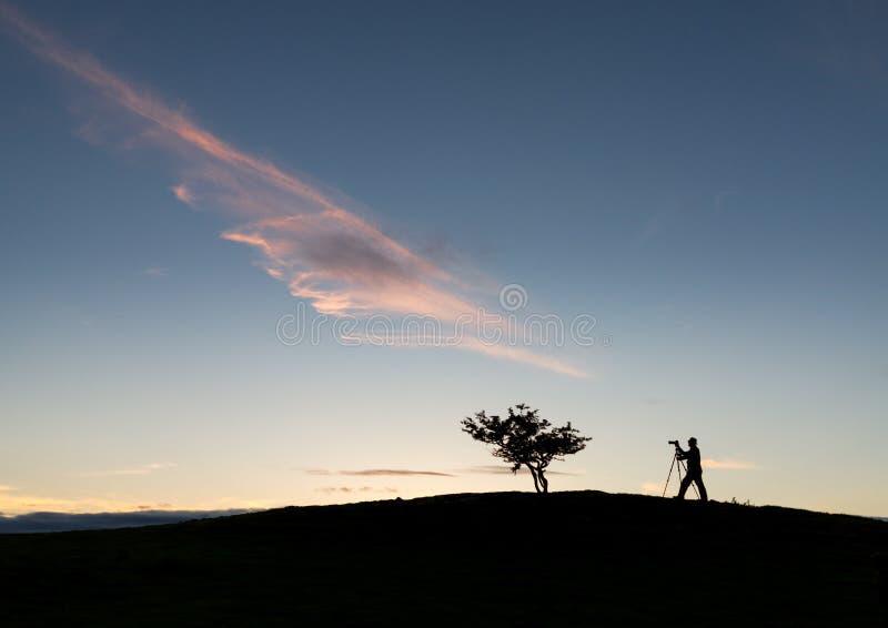 Fotografo con il treppiede in siluetta con l'albero immagini stock