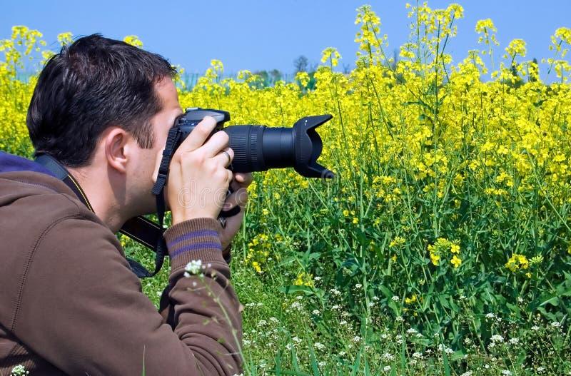 fotografo della natura fotografie stock