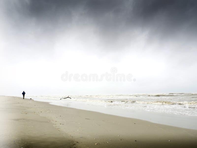 Fotografo maschio che prende immagine sulla spiaggia fotografie stock libere da diritti