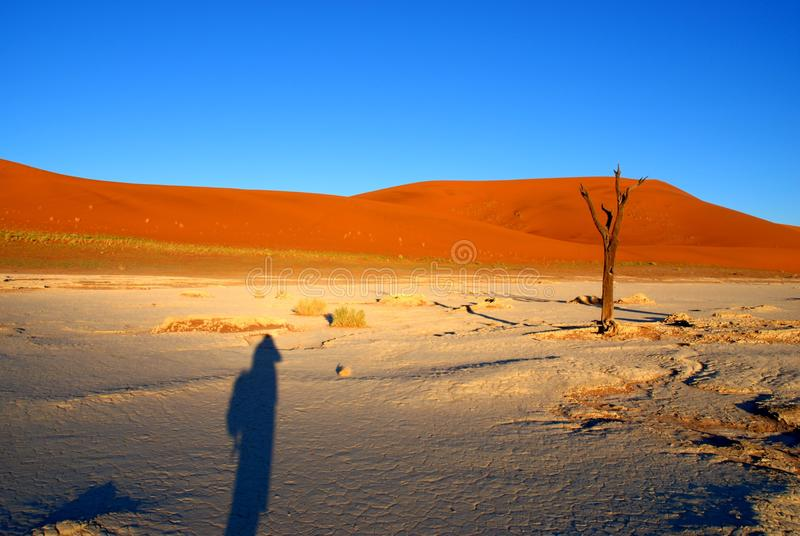 Download Fotographers shadow stock photo. Image of namibia, blue - 26117050