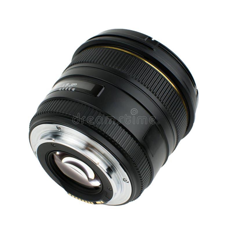Fotolins på en vit bakgrund fotografering för bildbyråer