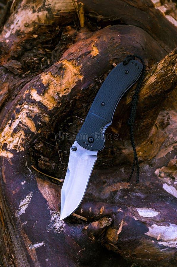 Fotomes op de aard Foto van een mes op een boom stock afbeeldingen