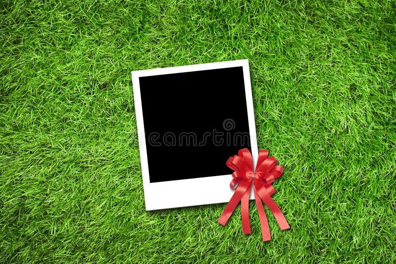 Fotoram på gräs royaltyfria foton
