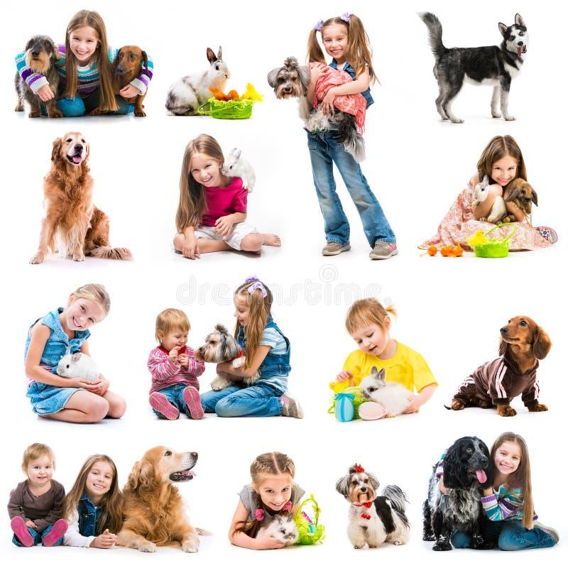Fotos de la colección de niños jovenes con los perros y imágenes de archivo libres de regalías