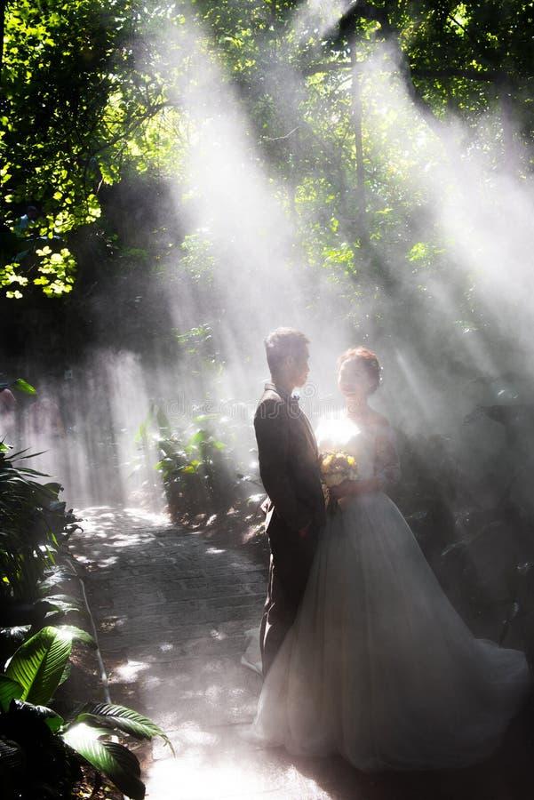 Fotos do casamento na névoa imagem de stock