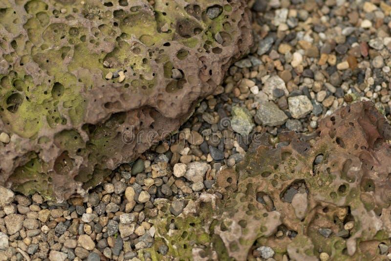 Fototextur av den naturligt poröst stenen och grus royaltyfria bilder