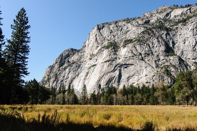 FotoYosemite Nationalpark an einem schönen sonnigen Tag lizenzfreie stockfotografie