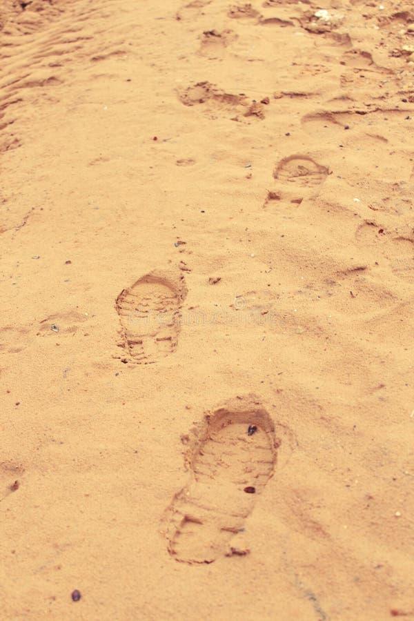 Fotspår av en luffare på den gula sanden royaltyfria foton