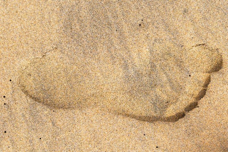 Fotsp?r av en person p? v?t sand arkivbild