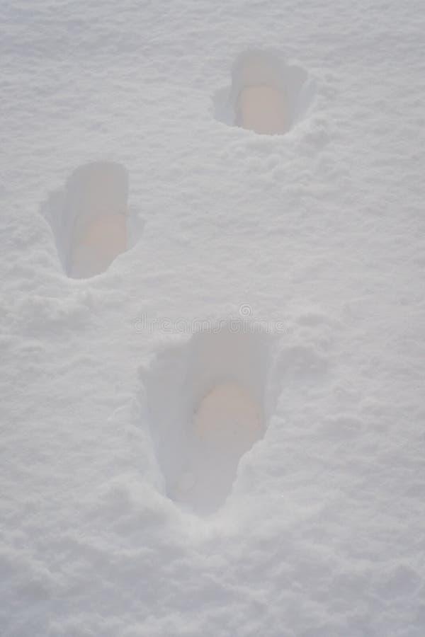 Fotspår i en djup insnöad vinter royaltyfri fotografi