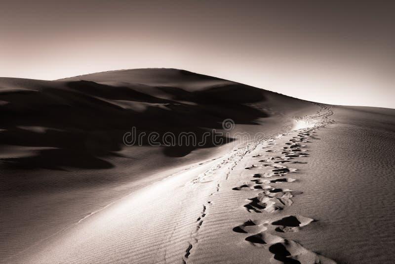 Fotspår i en sanddyn royaltyfria foton