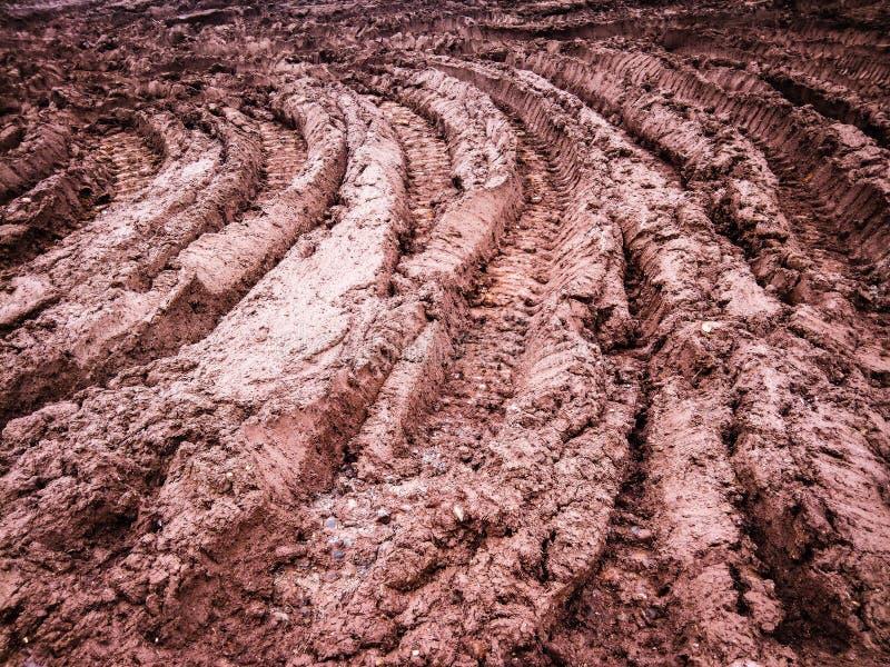 Fotspår i muden royaltyfri fotografi