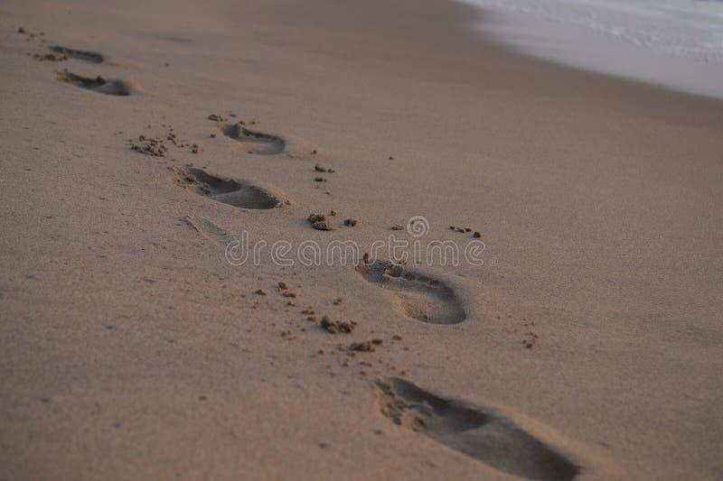 Fotspår i sanden royaltyfri bild