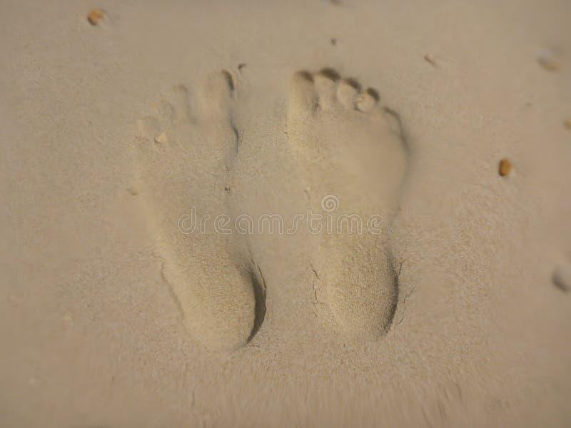 Fotspår i sanden arkivfoto
