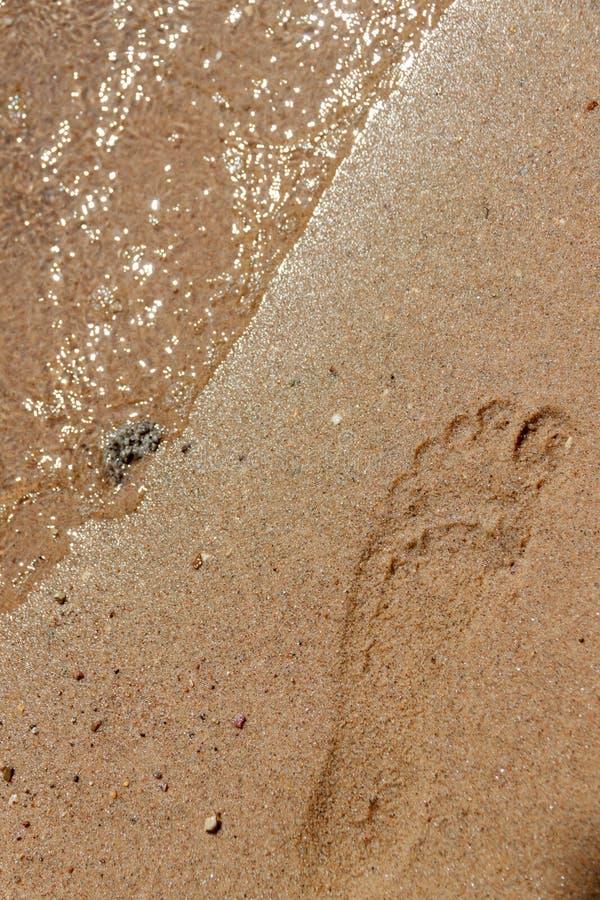 Fotspår i sanden nära kustlinjen arkivfoto