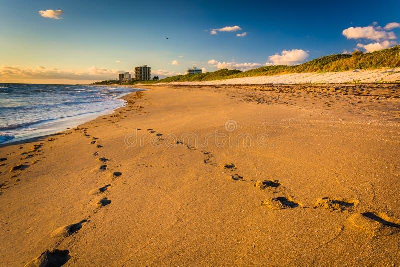 Fotspår i sanden på Coral Cove Park, Jupiter Island, Flori arkivfoton