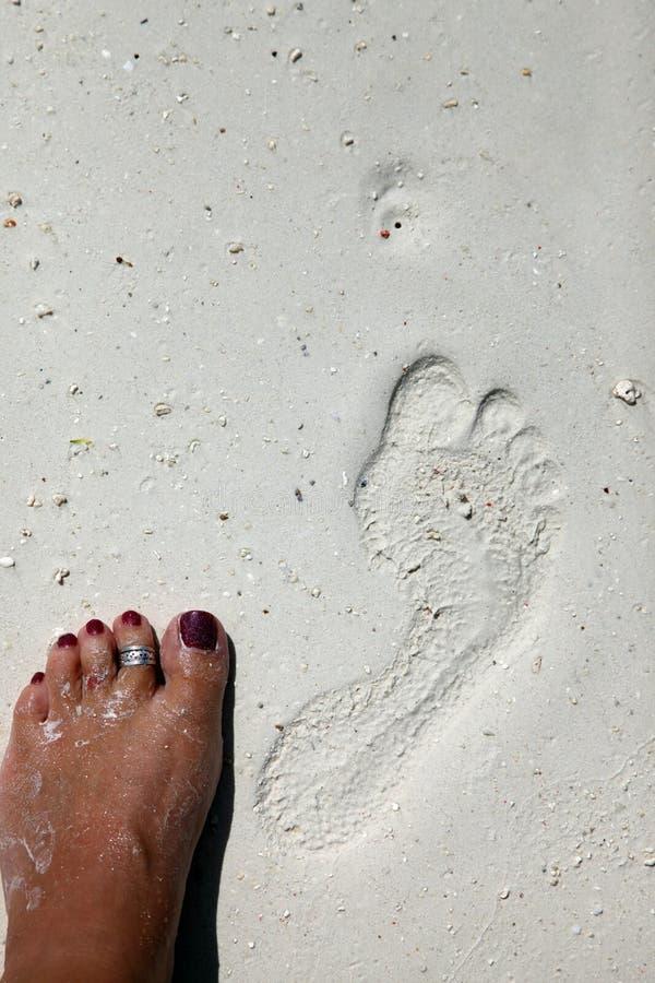 Fotspår på en korallstrand arkivfoton