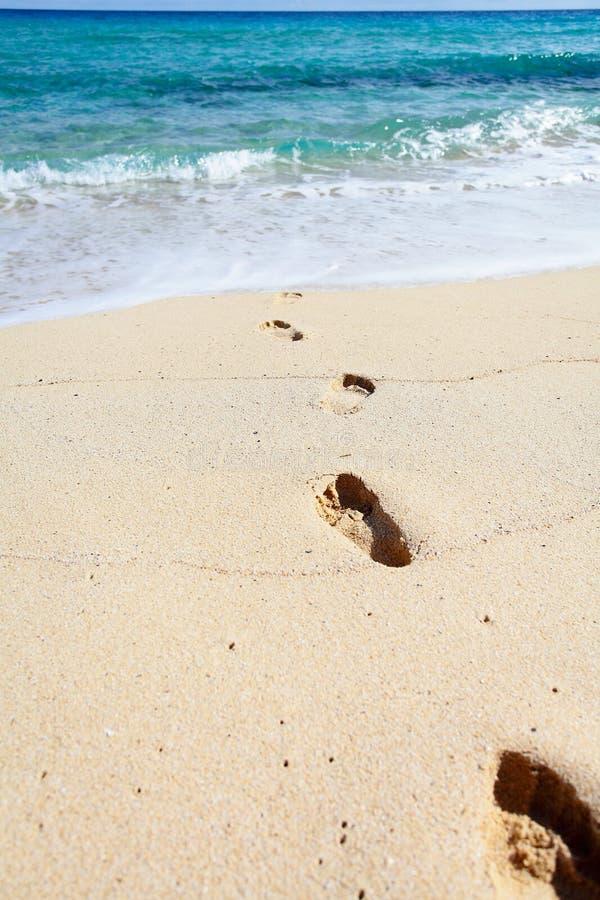 Fotspår på en sand royaltyfria foton