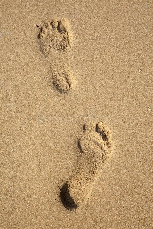 Fotspår på sand på stranden royaltyfria bilder