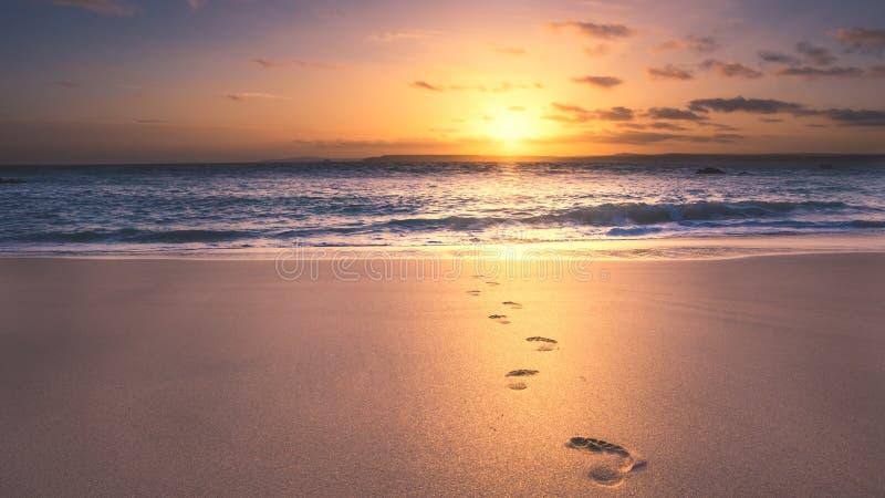 Fotspår på stranden arkivbild