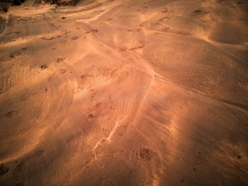 fotspår sand vått royaltyfri foto