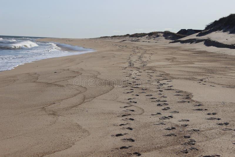 Fotspår som lämnas i sand på det sandiga kust- havet, sätter på land fotografering för bildbyråer