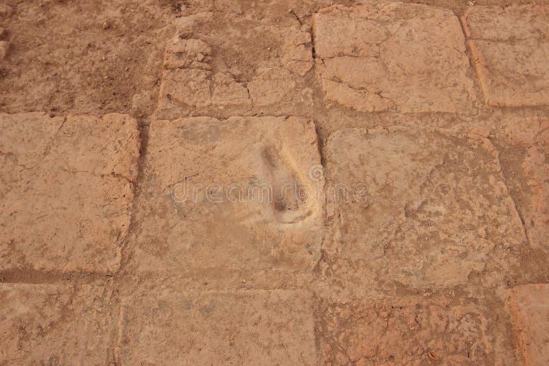Fotspåret i Chogha Zanbil, Iran arkivfoto