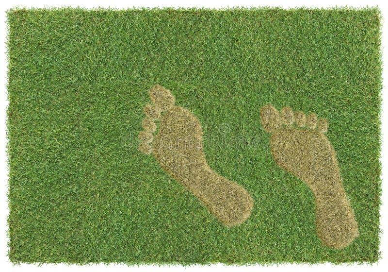 fotspårgräs arkivbilder
