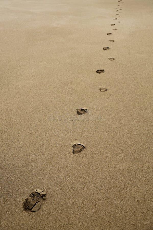 Fotsp?r i sanden arkivfoto