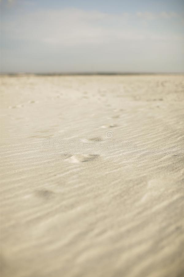 Fotsp?r i sanden arkivbilder
