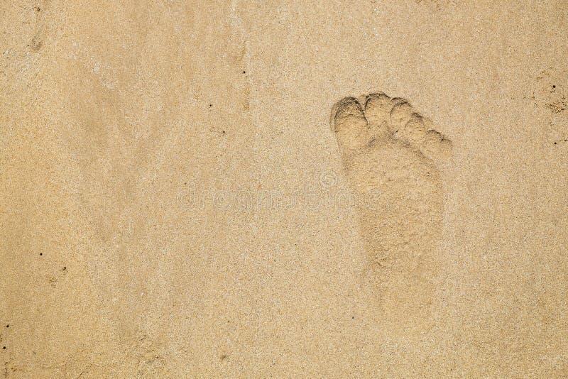Fotsp?r p? strandsanden Mänskliga barfota Mark After Walk Along stranden royaltyfri foto