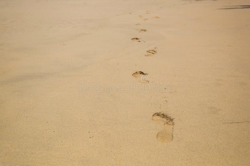 Fotsp?r p? strandsanden M?nskliga barfota Mark After Walk Along stranden royaltyfri foto