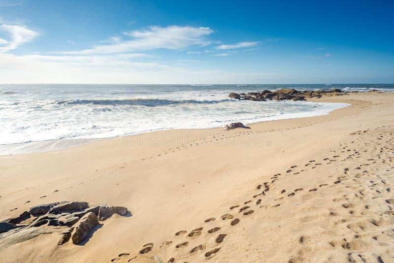 Fotsteg av moment på stranden royaltyfri bild