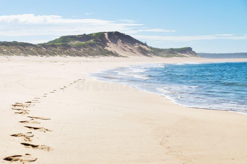 Fotsteg på stranden av Peterborough på den stora havvägen, Victoria, Australien royaltyfri bild
