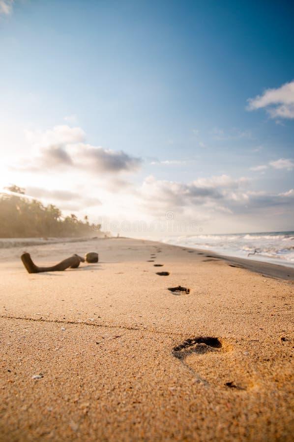 Fotsteg på stranden vid Tayrona i Colombia royaltyfri foto
