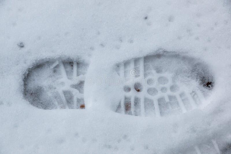 Fottryck av en m?nsklig sko p? den vita sn?n arkivbilder