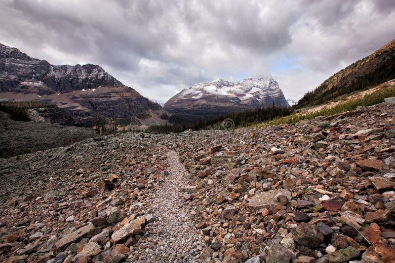 fotvandra bergtrail arkivbild