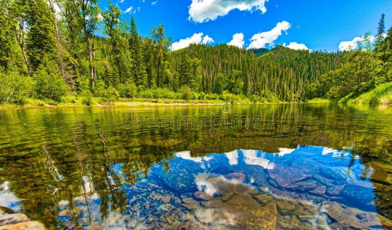 Fotvandra bredvid den Coeur D 'Alene floden i Idaho, ett stilla ögonblick av reflexionen royaltyfri fotografi