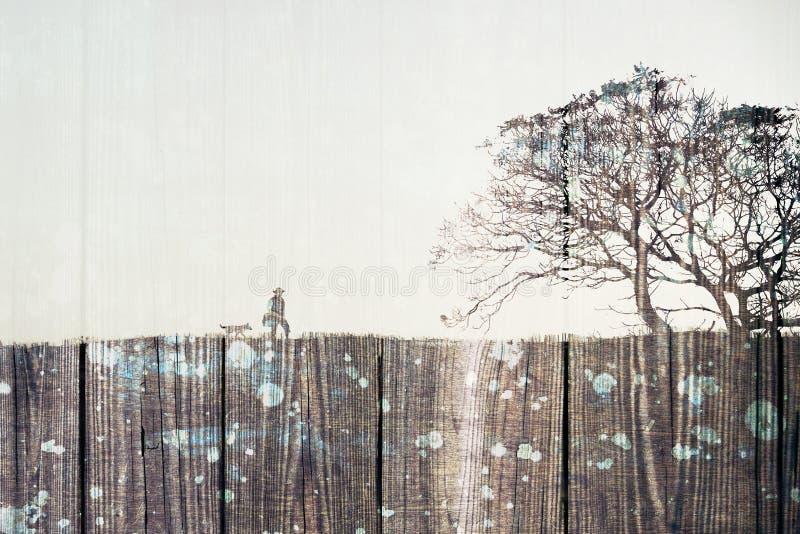 Fotvandra - dubbel exponering royaltyfria foton