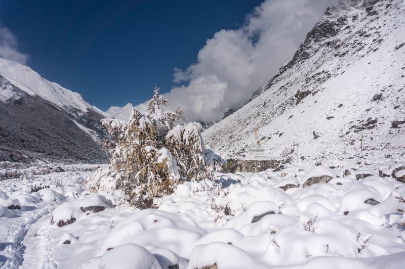 Fotvandra i den Langtang dalen som täckas i snö arkivbild