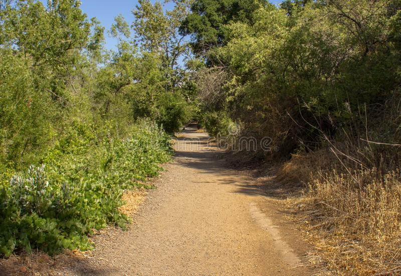 Fotvandra i Santiago Oaks Regional Park arkivbilder