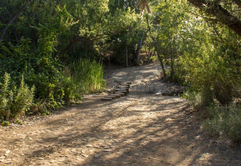 Fotvandra i Santiago Oaks Regional Park royaltyfri fotografi