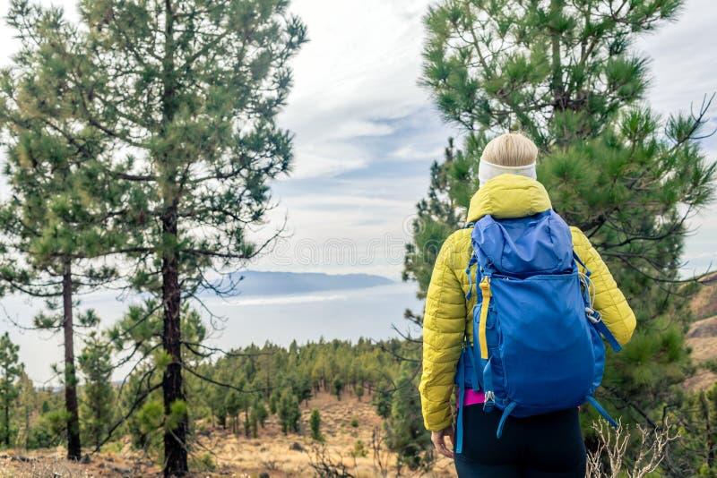 Fotvandra kvinnan med ryggsäcken som ser inspirerande bergla arkivbild