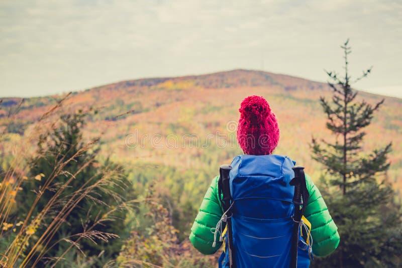 Fotvandra kvinnan med ryggsäcken som ser inspirerande höstgolde royaltyfri fotografi
