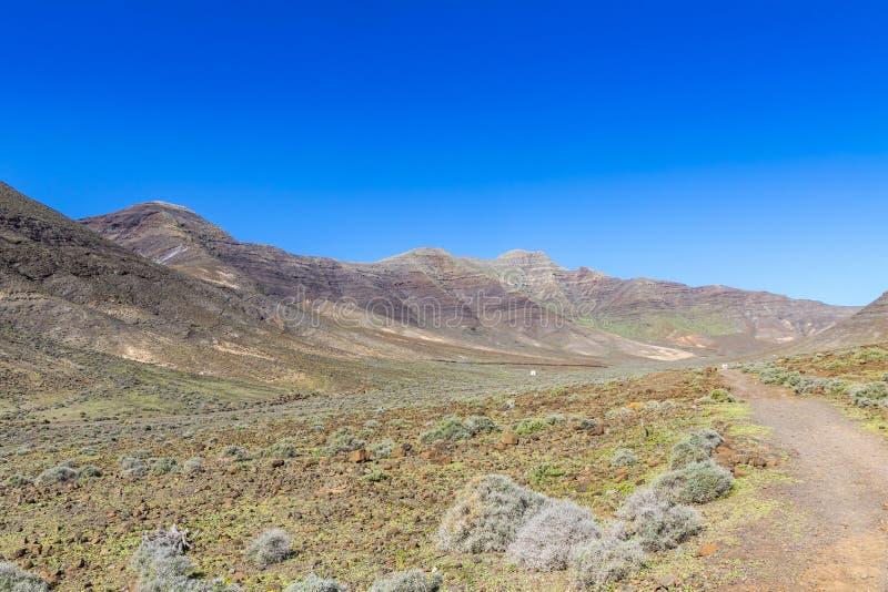 Fotvandra på den Jandia halvön, Fuerteventura, kanariefågelöar, Spanien arkivbilder
